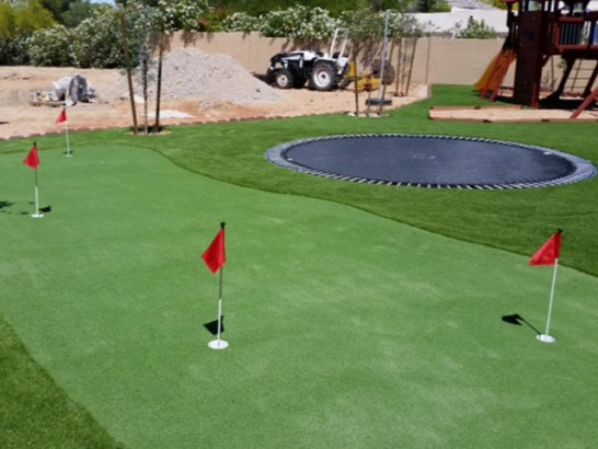 Artificial Grass Smyer, Texas Artificial Putting Greens, Backyard Designs artificial grass
