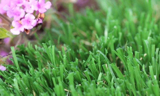 artificialturf Emerald-52