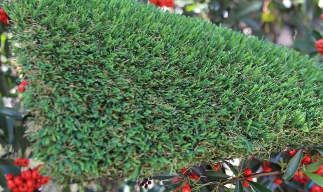 artificialturf Patriot Spring-76