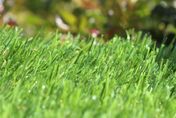 artificialturf Spring-46