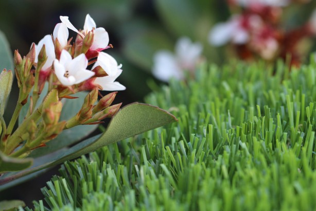 artificialturf Spring-60