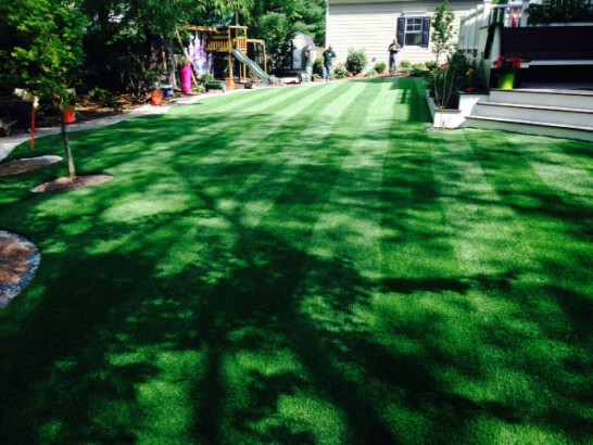 Artificial Grass Photos: Fake Grass Los Ybanez, Texas Lawns, Backyard  Garden Ideas