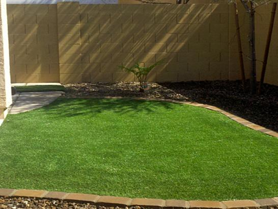 Fake Turf Agua Dulce Texas Lawn artificial grass