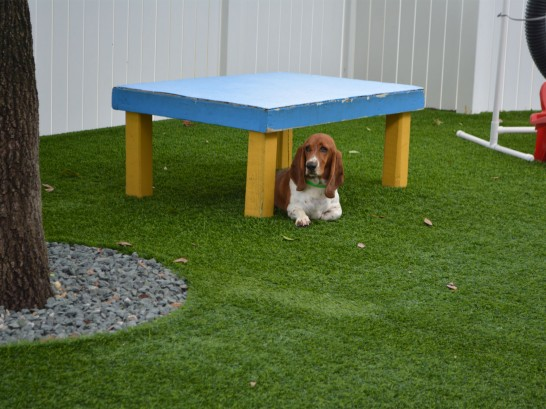 Faux Grass Terlingua, Texas Artificial Grass For Dogs, Commercial Landscape artificial grass
