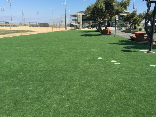 Lawn Services Bovina, Texas Lawn And Garden, Recreational Areas artificial grass