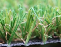Safest Artificial Turf Grass